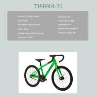 "OEM 20"" Road Bike Green Alloy Frame Road Bicycle 16T Freewheel"