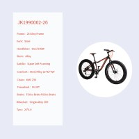 """OEM 26"""" Crusier Bike Grey With Orange Alloy Frame Crusier Bicycle 14-28T Freewheel"""