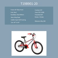 "OEM 20"" MTB Bike Grey With Red Alloy Frame MTB Bicycle 18T Freewheel"