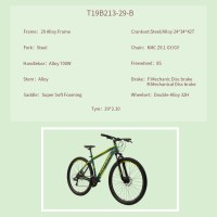 "OEM 29"" MTB Bike Green Alloy Frame Mountain Bicycle Double-Alloy 32H Wheelset"