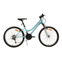 "OEM 24"" MTB Bike Purple/Blue Steel Frame Mountain Bicycle 14-28T Freewheel"